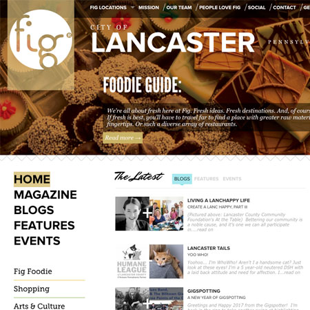 Fig Magazine